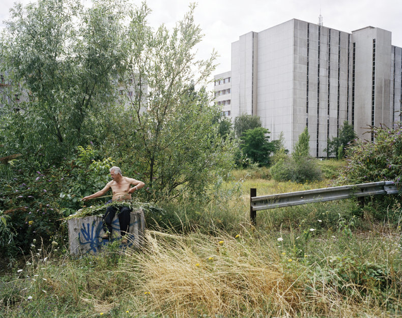 The Making of a Meadow - Cyrille Weiner - Phases Magazine