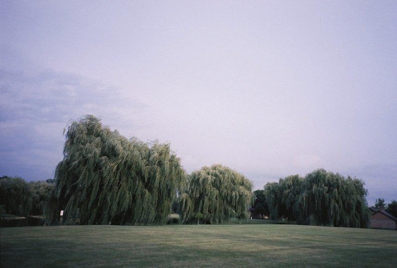 Photos Waiting To Be Taken - Katherine Squier - Phases Magazine