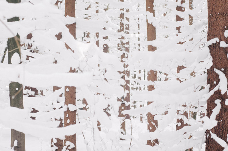 Winter - Martin Ilgner - Phases Magazine