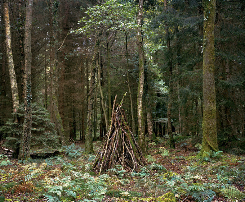 With The Woods - Joseph D Conway - Phases Magazine