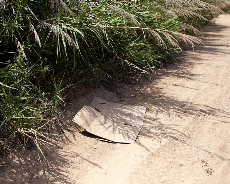 We Make the Path<br>by Walking - Paul Gaffney - Phases Magazine
