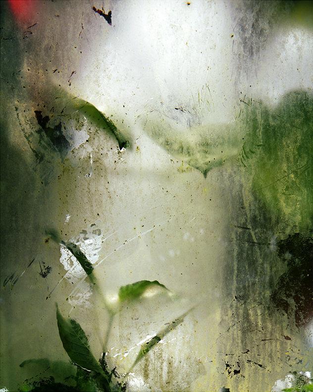 Winterless Skies - Alice Myers - Phases Magazine