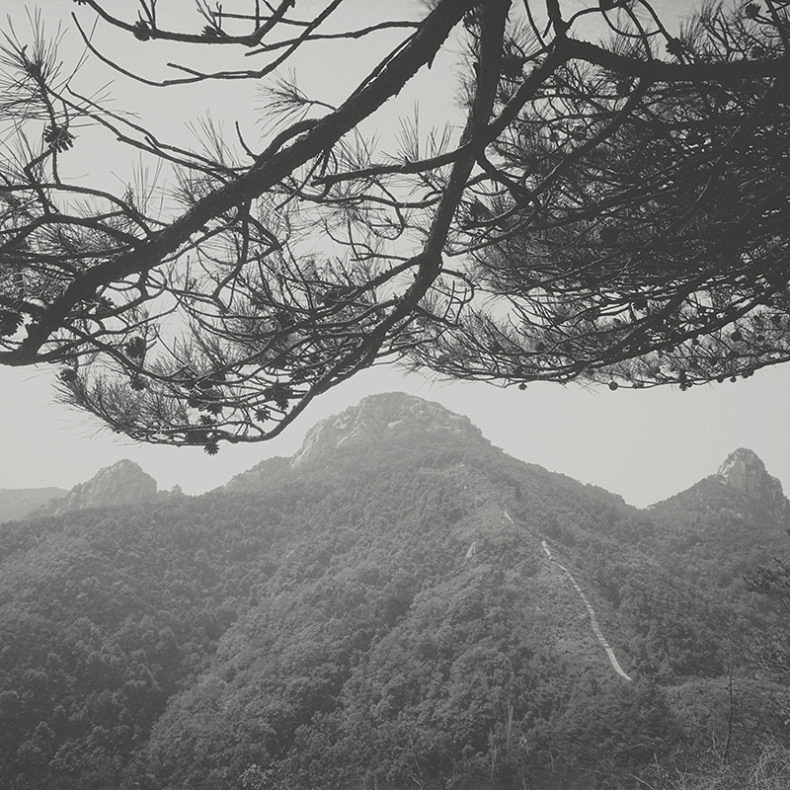 Odes of Zhou & Shao - Taca Sui - Phases Magazine