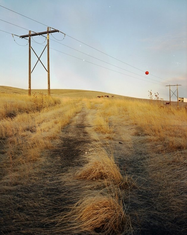 Random Silence - Yong Xiao - Phases Magazine