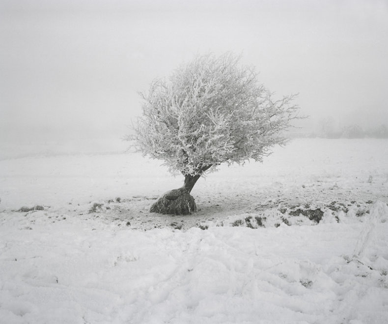 A Fading Landscape - Martin Cregg - Phases Magazine