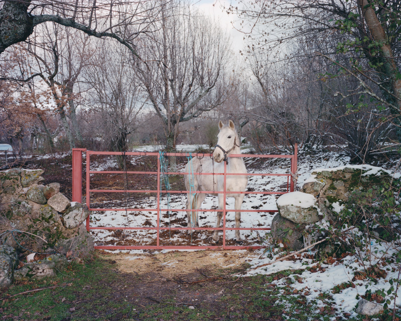Country Fictions - Juan Aballe - Phases Magazine