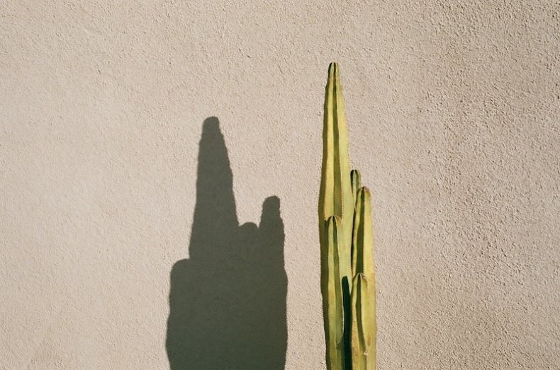 Desert Hours - Lorena Lohr - Phases Magazine