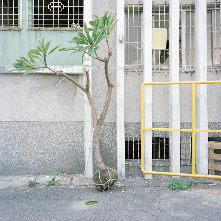 Performing Grounds - Patrick Morarescu - Phases Magazine