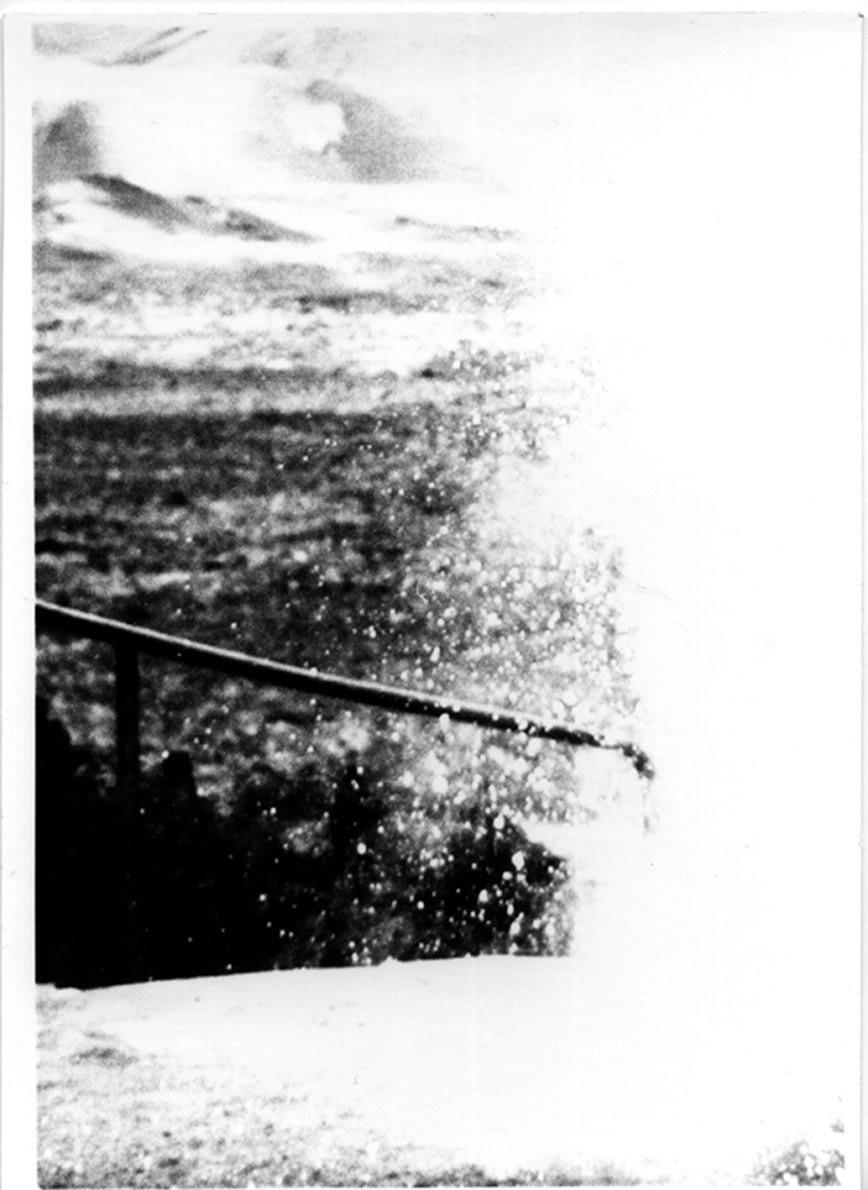 Medula - Camilo Amaya - Phases Magazine