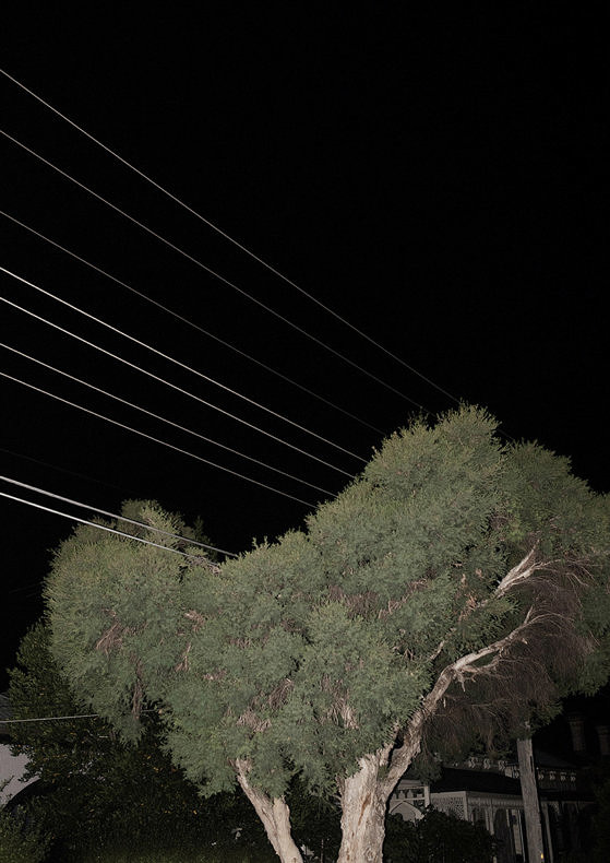 A Warm Wind at Night - Piotr Pietrus - Phases Magazine