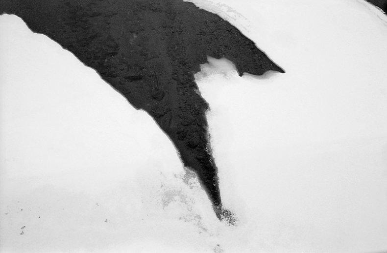 Mono No Aware - Vincent Soulié - Phases Magazine
