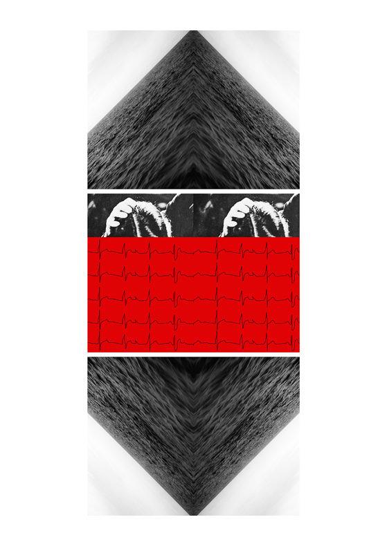 Selected Works - Eeva Hannula - Phases Magazine