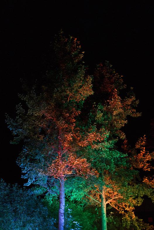 Still Light - Paula Prats - Phases Magazine