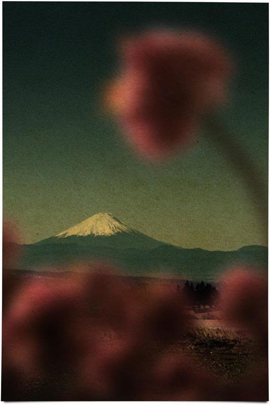 The Mouth of Krishna - Albarran Cabrera - Phases Magazine