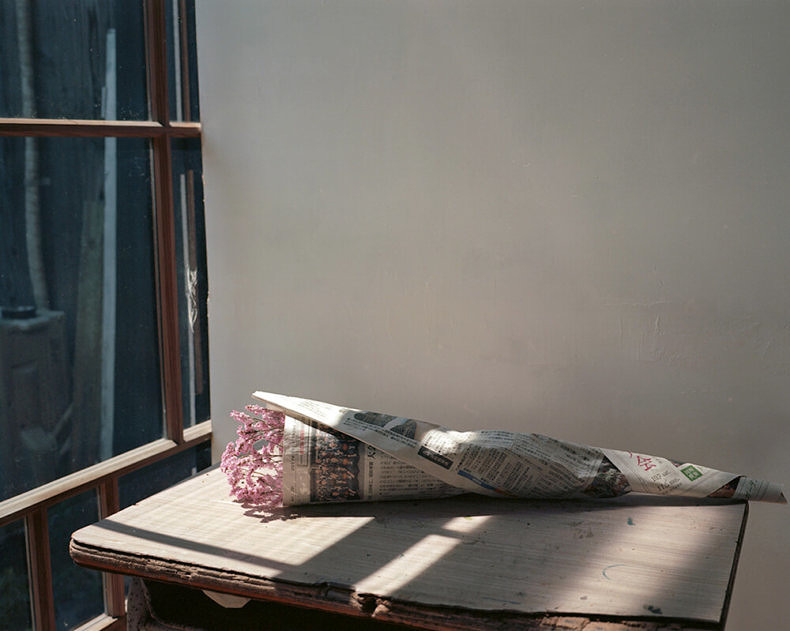 Komorebi - Anne-Sophie Guillet - Phases Magazine