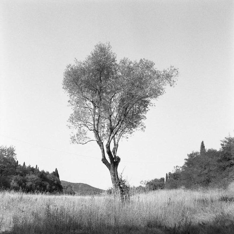 Intimate Wanderings - Florian Baehr - Phases Magazine
