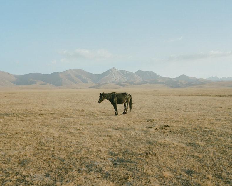 Horsehead Nebula - Matthieu Litt - Phases Magazine