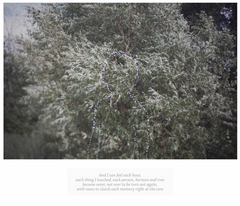 The Journey - Marilia Destot - Phases Magazine