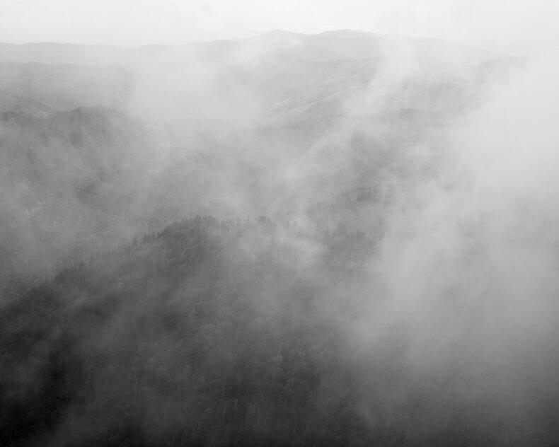 Temporal Nature - Matthew Jessie - Phases Magazine