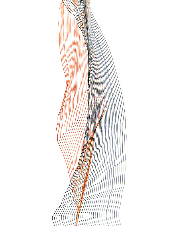 The Divergent Image - Fernando Marante - Phases Magazine