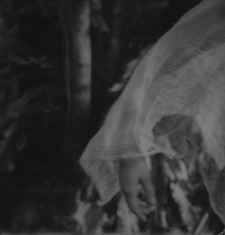 Water, flower, knot, curve - Roosmarijn Pallandt - Phases Magazine