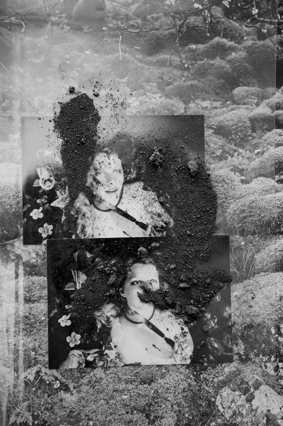 Latet anguis in herba - Ewa Doroszenko - Phases Magazine