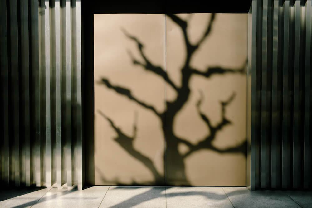 Selected Works - Mankichi Shinshi - Phases Magazine