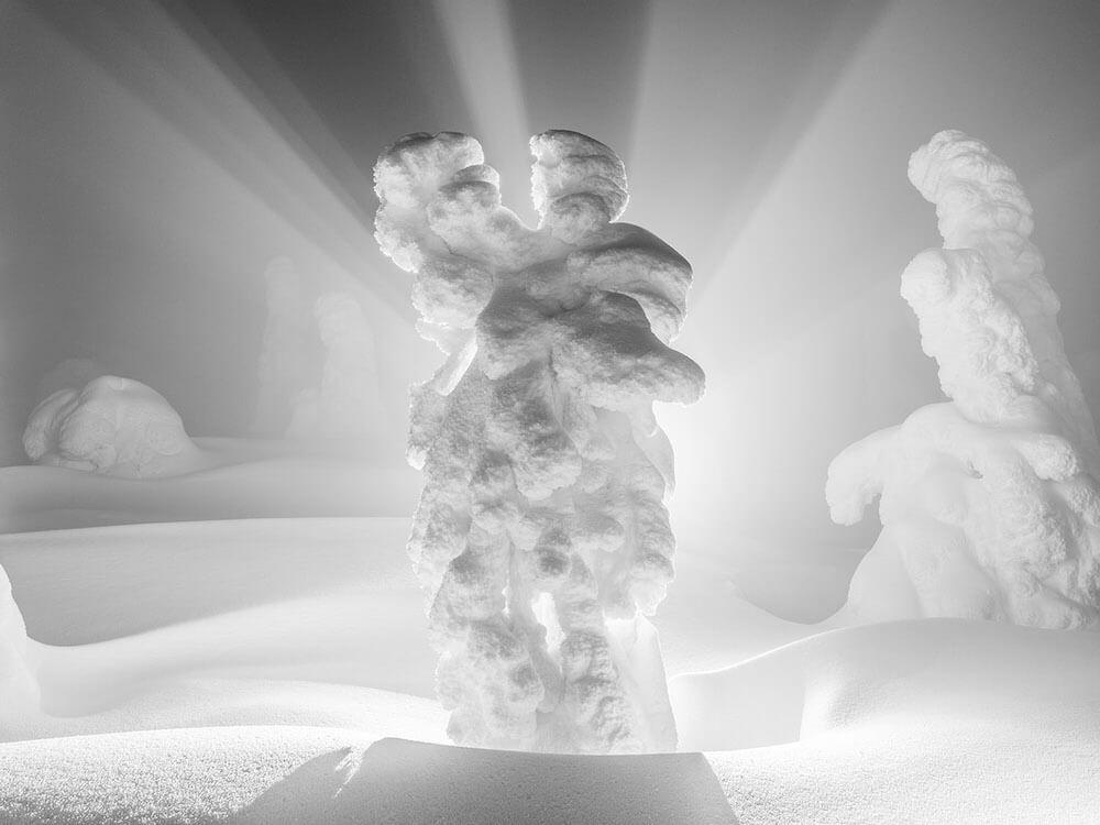 L'Étude de la Solitude - Vincent Bousserez - Phases Magazine