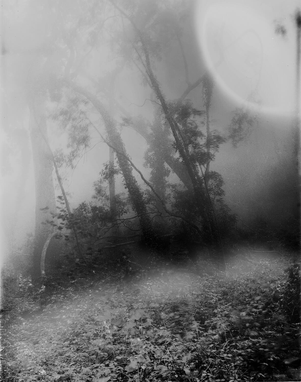 Selected Night Works - Piero Roi - Phases Magazine