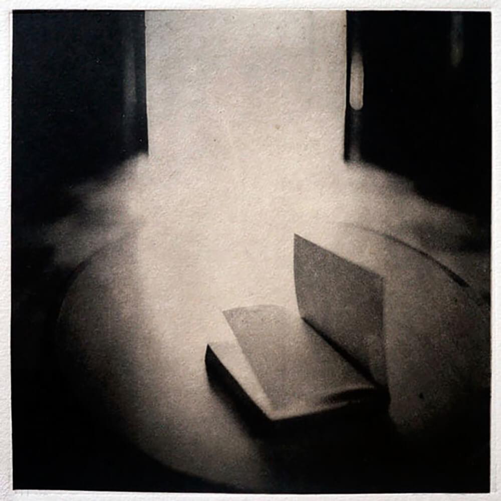 Fugue of the Blackbird - David Mondedeu - Phases Magazine