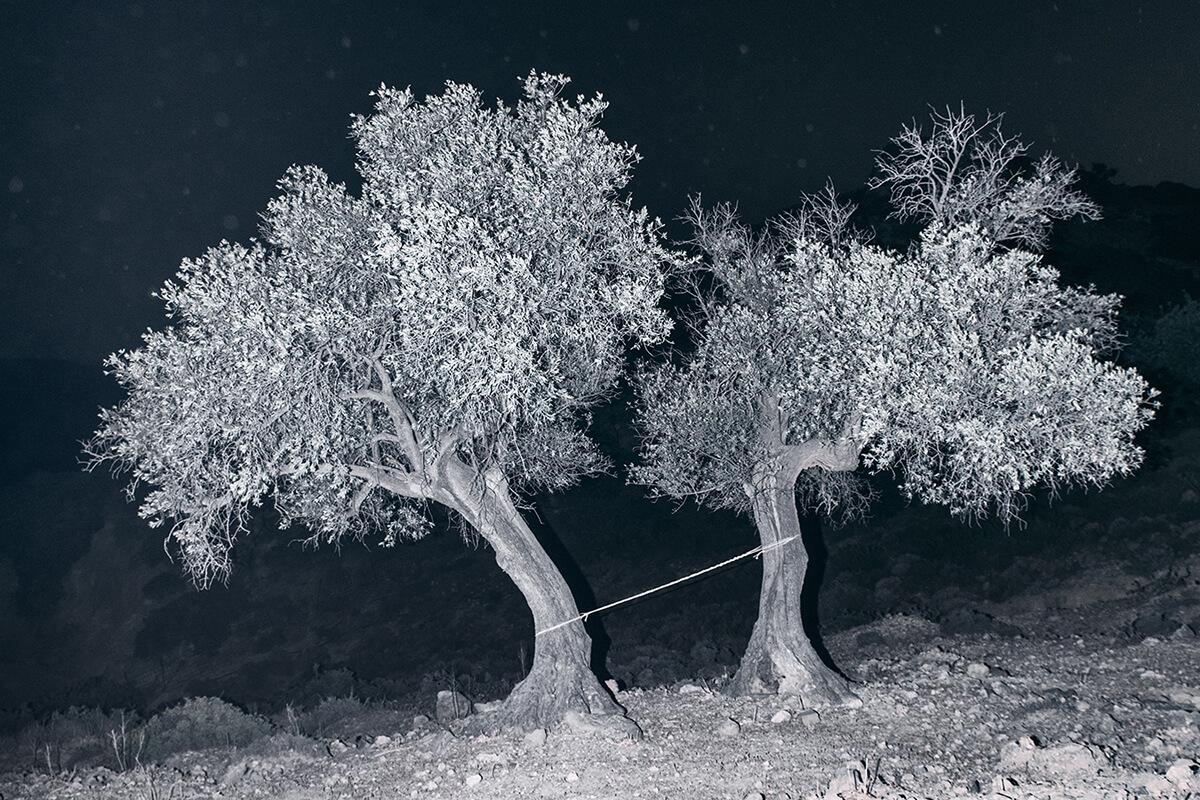 Τhe splitting of the chrysalis and the slow unfolding of the wings - Yorgos Yatromanolakis - Phases Magazine