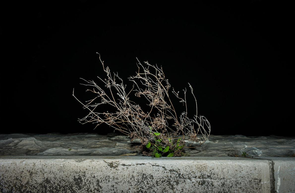 Unwanted - Anna Cherednikova - Phases Magazine